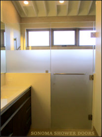 Frameless Shower Door and Panel