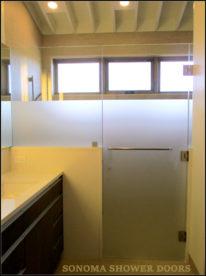 Frameless Shower Door and Panel